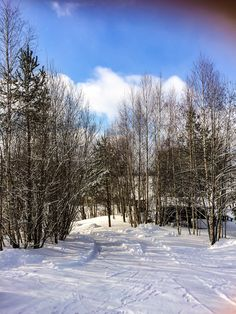 Finland, Outdoor, Winter Landscape, Paisajes, Outdoors, Outdoor Games, The Great Outdoors