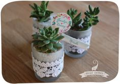 Succulent pots with personalised flags Succulent Pots, Succulents, Wedding Stationery, Flags, Wedding Events, Place Cards, Place Card Holders, Boutique, Weddings