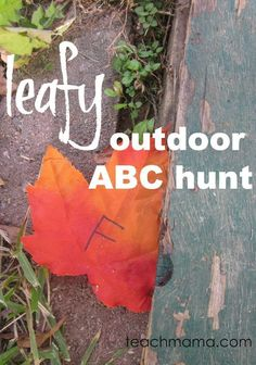 Try this leafy outdoor alphabet letter hunt to get kids moving and grooving and having fun with letters.This leafy outdoor abc hunt is a super fun fall activity for kids that will let kids see the FUN in learning just about anywhere, any time! Add this to your list of fun fall learning activities for the kids! #teachmama #literacy #weteach #alphabet #alphabetgames #fallactivity #kidsactivities #handsonlearning #outdooractivity #leafactivity