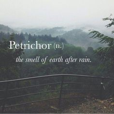 Who knew there was a word for this! I always thought that on the East Coast you could smell the history when it rains!