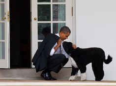 You can tell a lot about a man by the way he treats his dog. Just sayin'.
