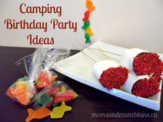 Camping Birthday Party Ideas (or just for a fun family indoor camping night). #KidsParty #FamilyFun