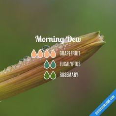 Morning Dew - Essential Oil Diffuser Blend #essentialoil