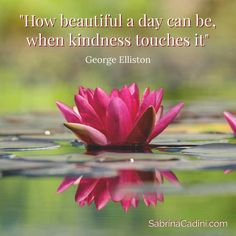 Kindness Is Often Misunderstood And Considered To Be A Sign Of Weakness This