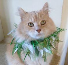 Pet Boa Flashy Scrunchie by ScotsPlace on Etsy, $12.00