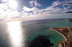 Um avião de controle remoto caiu na costa da Austrália e registrou uma vida submarina incrível
