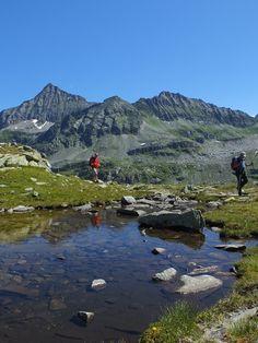Geführte Wanderung am Weißsee Gletscher. Mountains, Nature, Travel, National Forest, Hiking, Things To Do, Naturaleza, Viajes, Destinations