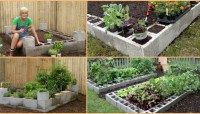 Brilliant Gardening Project: How to Make a Raised Garden Bed Using Cement Blocks
