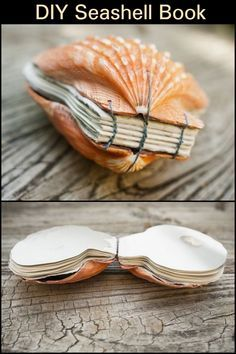 Give the old, boring scrapbook an upgrade with this seashell book. Fun Diy Crafts, Beach Crafts, Book Crafts, Arts And Crafts, Diy Gifts To Make, Great Gifts, Diy Projects To Try, Craft Projects, Handmade Books