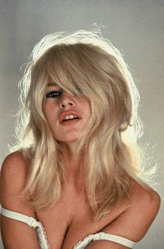 — Brigitte Bardot