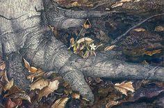 Andrew Wyeth - Spring Beauty