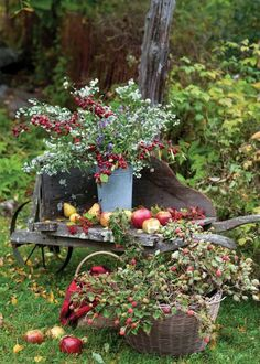Charming and colorful autumn outdoor vintage country inspiration with wheelbarrow and blooms - The Cottage Journal. Country Life, Country Living, Country Charm, Fruits Decoration, Fall Decorations, Deco Champetre, Harvest Time, Autumn Garden, Wheelbarrow