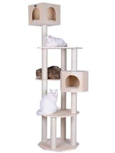 Armarkat Premium Pinus Sylvestris Wood Cat Tree Condo Scratching Post Kitty Furniture Tall Sturdy Light Wood and Sisal Rope ** Unbelievable cat item right here!