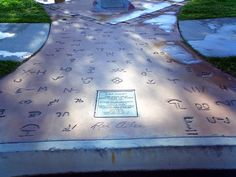 Hollywood Boulevard, Hollywood Walk Of Fame, Grave Markers, Famous Graves, Country Music Stars, Film Industry, Arizona, Tank Man, Singer