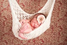 Newborn photo - hammock baby! :)