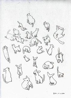 cat scribble illustration