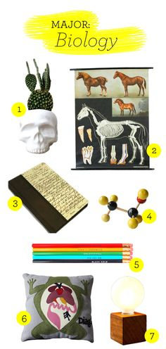 All about biology? Here are dorm picks for you.