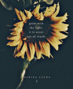 Lighting, 52 Reasons, Moonflower, Instagram, Posts, Book, Messages, Lights, Book Illustrations