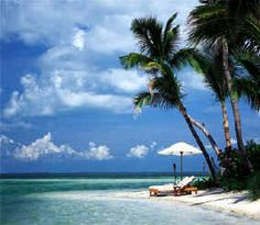 Key West, Florida Chintomby Chintomby Elizabeth let's plan a sister vacation for sometime next year somewhere Brandy! I wanna go to key west so bad! All Inclusive Honeymoon, Best Honeymoon Destinations, Honeymoon Spots, Vacation Places, Dream Vacations, Vacation Spots, Places To Travel, Places To Visit, Honeymoon Deals
