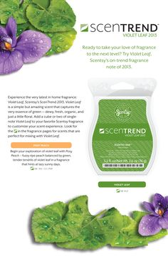 Coming this Feb. contact me to find out more! Scentsy, How To Find Out, Fragrance, Perfume