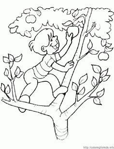 2 flower coloring pages - ColoringforKids.info | ColoringforKids.info