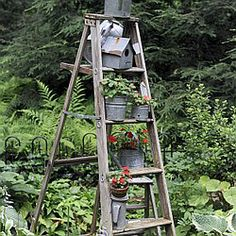 An old ladder, decorated with various planters is found in the Finksburg, Md., garden of artist Sherrill Cooper. (Barbara Haddock Taylor/Baltimore Sun)