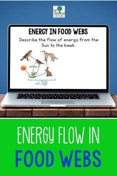 The perfect activities to assess student understanding of how energy flows through food chains and food webs. Use as an alternative to worksheets. Includes 24 challenging questions for food webs for use with Google Drive™. For 4th grade and 5th grade science students. Has food web designs for desert, grasslands, and forest ecosystems. Teaching 5th Grade, 5th Grade Science, Science Student, Elementary Science, Teaching Science, Upper Elementary, Elementary Schools, Food Webs, Web Activity