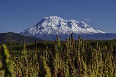 Chimborazo - Ecuador Photo by Miguel Macias-Huerta — National Geographic Your Shot