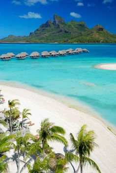 Four Seasons Bora Bora. travel vacation bora bora Hawaii Mexico destination budget friendly save money easy family spring break bikini summer 2018 2019 happy love beach tropical paradise palm tree sand towel go away leave town goals friends girls trip night out weekend getaway college dream turtles dolphins adventure hike