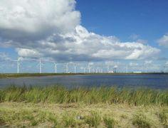 Landscape photography: Slufter 2e Maasvlakte