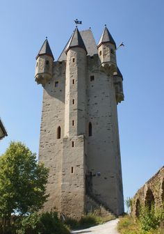 Burg Nassau - built around 1100 by Count Dudo-Henry of Laurenburg - The ruins of the castle are situated on a rock outcropping about 120 meters (390 ft) above the Lahn River.
