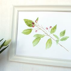Berries and Leaves Art Print of Watercolor Painting (Kathleen Maunder)