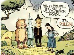 wait a minute. this isn't a yellow brick road. its pollen Funny Cartoons, Funny Comics, Allergy Memes, Allergies Funny, Bizarro Comic, Comics Kingdom, Great Memes, Yellow Brick Road, I Love To Laugh
