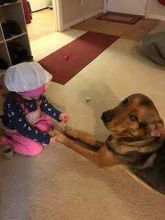 Or even volunteer to help fulfill your hobbies. | 23 Reasons Why Every Kid Should Grow Up With A Dog