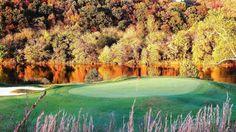 Pete Dye River Course - hole # 8 green.