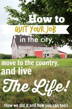 Permaculture Design, Off The Grid, Country Life, Country Living, Quitting Job, Homestead Survival, Survival Skills, Homestead Farm, Survival Tips