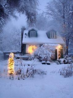 Rosamaria G Frangini | Winter Blues |