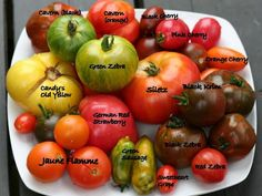 This is a great guide to #heirloom #tomatoes!