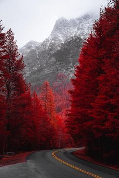 Going to the Sun Road West Glacier Montana (Photo credit to Andre Benz) Red Wallpaper, Scenery Wallpaper, Nature Aesthetic, Red Aesthetic, Beautiful Nature Wallpaper, Beautiful Landscapes, Landscape Photography, Nature Photography, Autumn Scenery