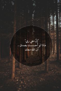 Arabic Love Quotes, Islamic Inspirational Quotes, Religious Quotes, Love Quotes Wallpaper, Islamic Quotes Wallpaper, Spiritual Beliefs, Spirituality, Emotional Photos, Islamic Information