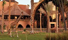 Disney's Animal Kingdom Villas – Kidani Village in Walt Disney World Resort is an African lodge-style Resort boasting accommodations that include kitchenettes/kitchens and multi-bedroom units. Featuring over 30 species of wildlife that roam free.