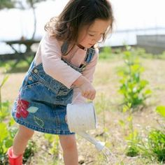 Gardening for Beginners, even the little ones