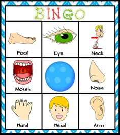 Body Parts Center Bingo- Can be used as a body part matching game with young students or a cooperative bingo game for vocabulary development with older students. This and many more activities are a part of my comprehensive MY BODY unit for Kindergarten s All About Me Preschool Theme, All About Me Activities, Activities For Kids, Body Preschool, Preschool Class, In Kindergarten, Body Parts Theme, Human Body Activities, Body Parts Preschool Activities