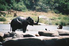 Inde #7 : l'incroyable Hampi en images