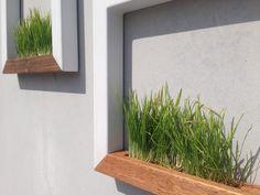 Wall Planter