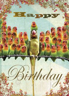 Happy Birthday Parrots Greeting Card by Max Hernn