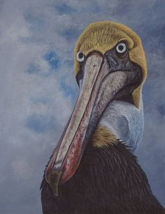 ATTITUDE, a brown pelican painting by Kathrin Guenther. Acrylics on board, 18 inch by 14 inch. Pelican Drawing, Graphite Drawings, Sea Birds, Wildlife Art, Artist At Work, Attitude, My Arts, Art Paintings, Pets