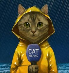 Tom Cat reporting live about. Indonesia ahahha - - Profil - Katzen World Image Chat, Photo Chat, Cat Drawing, Crazy Cats, Cool Cats, Cat Art, Cats And Kittens, Cat Lovers, Dog Cat