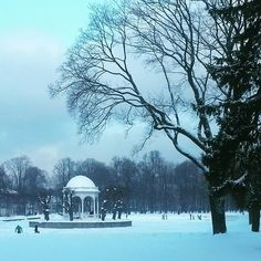 People skating on Kadriorg pond. #notseeneveryday #skating #winterday #tallin #tallinna #winter #lovingit #snow #cold #pond #ice