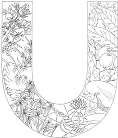 Letter U with Plants coloring page from English Alphabet with Plants category. Select from 24661 printable crafts of cartoons, nature, animals, Bible and many more.